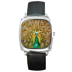 Peacock Feather Bird Peafowl Square Metal Watch