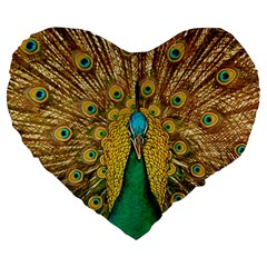 Peacock Feather Bird Peafowl Large 19  Premium Heart Shape Cushions