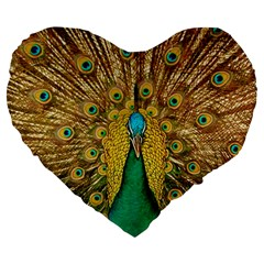 Peacock Feather Bird Peafowl Large 19  Premium Flano Heart Shape Cushions