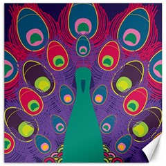 Peacock Bird Animal Feathers Canvas 12  X 12