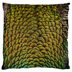 Peacock Bird Feather Color Standard Flano Cushion Case (one Side)
