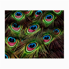 Peacock Feathers Feather Color Small Glasses Cloth (2 Side)