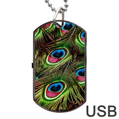 Peacock Feathers Feather Color Dog Tag Usb Flash (two Sides)