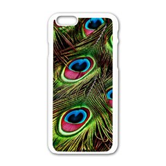 Peacock Feathers Feather Color Apple Iphone 6/6s White Enamel Case