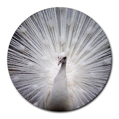 Peacock White Bird Nature Round Mousepads