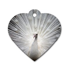 Peacock White Bird Nature Dog Tag Heart (two Sides)
