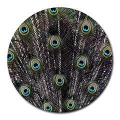 Background Peacock Feathers Round Mousepads