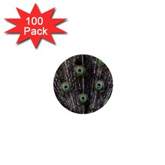 Background Peacock Feathers 1  Mini Buttons (100 Pack)