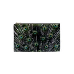 Background Peacock Feathers Cosmetic Bag (small) by Wegoenart