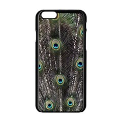 Background Peacock Feathers Apple Iphone 6/6s Black Enamel Case