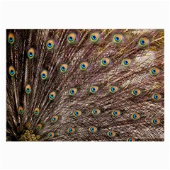 Peacock Feathers Wheel Plumage Large Glasses Cloth (2 Side)
