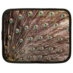 Peacock Feathers Wheel Plumage Netbook Case (xl)