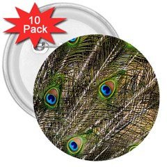 Peacock Feathers Color Plumag 3  Buttons (10 Pack)