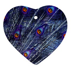 Peacock Feathers Color Plumage Ornament (heart)