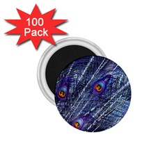 Peacock Feathers Color Plumage 1 75  Magnets (100 Pack)