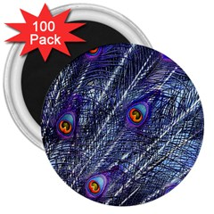 Peacock Feathers Color Plumage 3  Magnets (100 Pack)