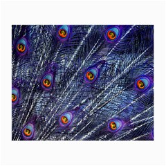 Peacock Feathers Color Plumage Small Glasses Cloth