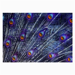 Peacock Feathers Color Plumage Large Glasses Cloth