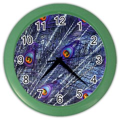 Peacock Feathers Color Plumage Color Wall Clock