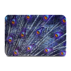 Peacock Feathers Color Plumage Plate Mats