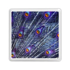 Peacock Feathers Color Plumage Memory Card Reader (square)