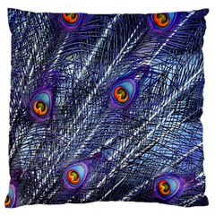 Peacock Feathers Color Plumage Large Cushion Case (one Side)