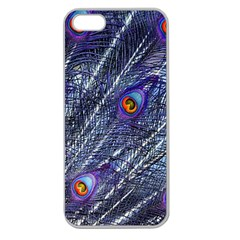 Peacock Feathers Color Plumage Apple Seamless Iphone 5 Case (clear)