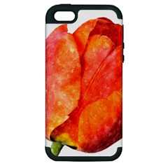 Red Tulip, Watercolor Art Apple Iphone 5 Hardshell Case (pc+silicone)