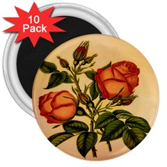 Vintage Flowers Floral Vintage 3  Magnets (10 Pack)