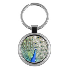Peacock Bird Colorful Plumage Key Chains (round)