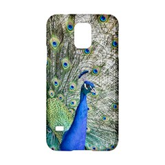 Peacock Bird Colorful Plumage Samsung Galaxy S5 Hardshell Case