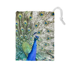 Peacock Bird Colorful Plumage Drawstring Pouch (large)