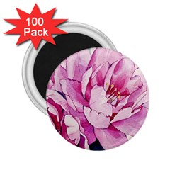Art Painting Flowers Peonies Pink 2 25  Magnets (100 Pack)