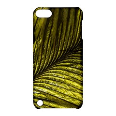 Feather Macro Bird Plumage Nature Apple Ipod Touch 5 Hardshell Case With Stand