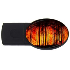 Forest Fire Forest Climate Change Usb Flash Drive Oval (4 Gb)