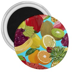 Fruit Picture Drawing Illustration 3  Magnets