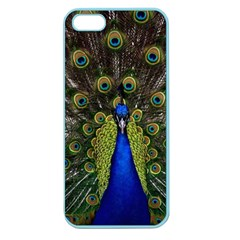 Peacock Bird Plumage Display Full Apple Seamless Iphone 5 Case (color)