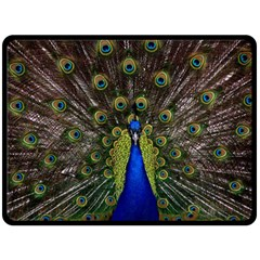 Peacock Bird Plumage Display Full Double Sided Fleece Blanket (large)  by Wegoenart
