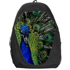 Peacock Close Up Plumage Bird Head Backpack Bag by Wegoenart