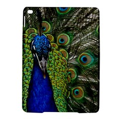 Peacock Close Up Plumage Bird Head Ipad Air 2 Hardshell Cases by Wegoenart