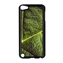 Green Leaf Giant Rhubarb Mammoth Sheet Apple Ipod Touch 5 Case (black)