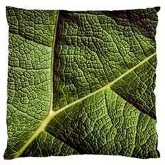 Green Leaf Giant Rhubarb Mammoth Sheet Standard Flano Cushion Case (one Side)