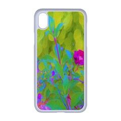 Red Rose With Stunning Golden Yellow Garden Foliage Apple Iphone Xr Seamless Case (white)