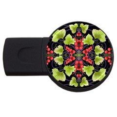 Pattern Berry Red Currant Plant Usb Flash Drive Round (4 Gb)