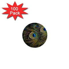 Peacock Tail Feathers Close Up 1  Mini Buttons (100 Pack)