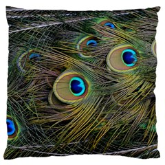 Peacock Tail Feathers Close Up Large Flano Cushion Case (one Side)