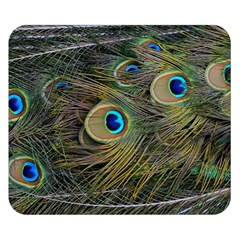 Peacock Tail Feathers Close Up Double Sided Flano Blanket (small)  by Pakrebo