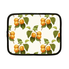 Apricot Fruit Vintage Art Netbook Case (small)