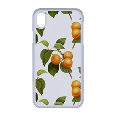 Apricot Fruit Vintage Art Apple Iphone Xr Seamless Case (white)
