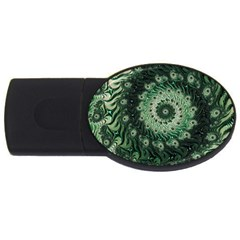 Fractal Art Spiral Mathematical Usb Flash Drive Oval (2 Gb)